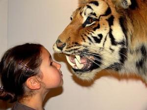 girl tiger